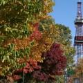 【抽選結果】札幌市営住宅の中期募集について 2014年9月