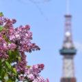 【定期募集・短期募集】札幌市営住宅の募集スケジュール2020年度